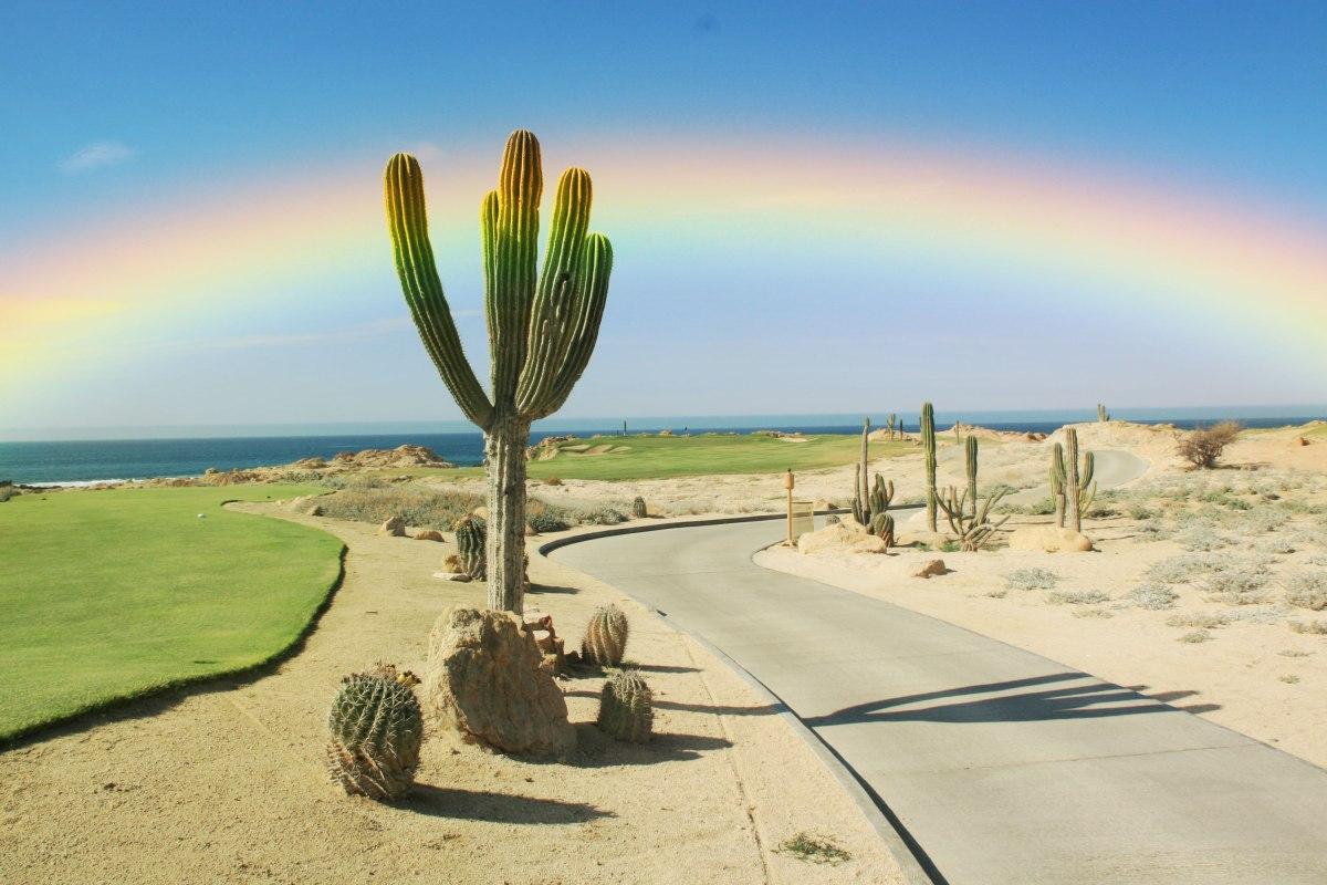 Rainbow-Love-Photoshop-Actions-Rainbow-Filters-4