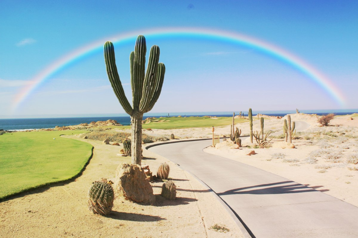 Rainbow-Love-Photoshop-Actions-Rainbow-Filters-5
