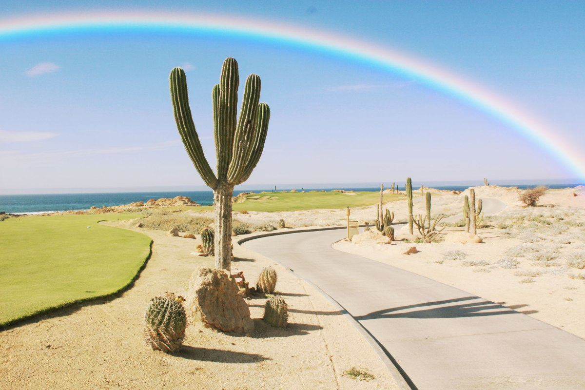 Rainbow-Love-Photoshop-Actions-Rainbow-Filters-6